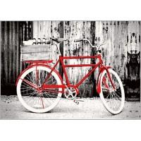 Dywan Rower szary 160x220cm